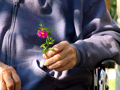 Gordon Rumford Ministries - Daily Devotional - Looking at life from a wheelchair