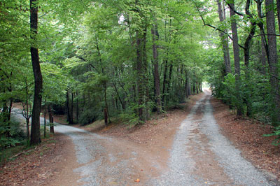 Gordon Rumford Ministries - Daily Devotional - The Road Less Travelled